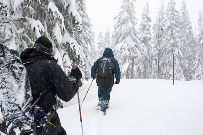 Snow surveyors approach SNOTEL site on Mount Hood