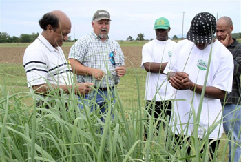 Randy King, PMC Manager training University of Arkansas at Pine Bluff Students plant identification.