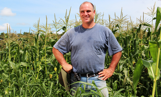 Jim Ward in his no-till sweet corn field in Sharon, Mass.