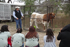 Dr. Joe Paschal presenting how a cow gets from the pasture to plate. Photo by Adelaida S. Fields