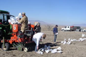 Planting off-center test plots in Utah. The Aberdeen PMC tests conservation plants in