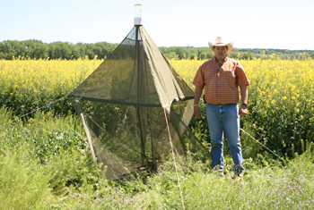 Allen Casey checks malaise trap for collecting flying insects trapped at PMC.
