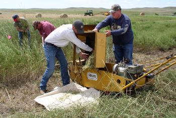Conservation Field Trials such as this one in Bison,SD are important plantings to gather performance data for inclusion into the field office technical guide