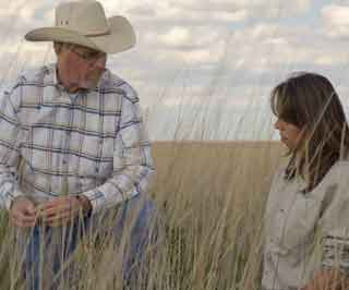 Mike White, NRCS District Conservationist in Hereford, and Shannon Rowley, NRCS District Conservationist in Stinnett, conduct a CRP field evaluation on an established stand of native grasses near Hereford.