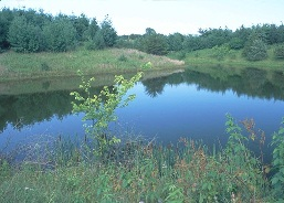 An excavated pond can serve many purposes on a farm.