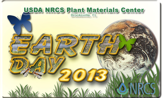 Earth day logo 2013
