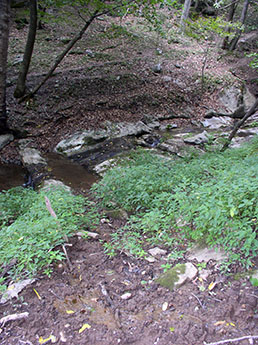 Streambank erosion prior to fencing and a stream crossing
