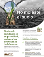Soil Secrets Disturb Spanish