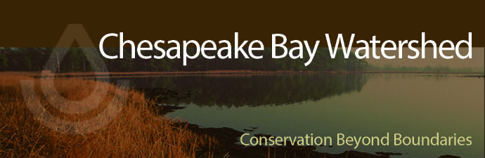 Chesapeake Bay Watershed Initiative
