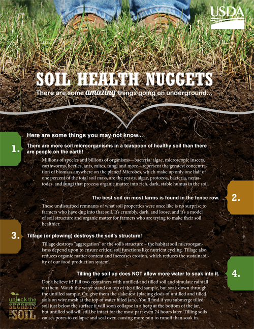 Dig a little learn a lot nrcs for Everything about soil