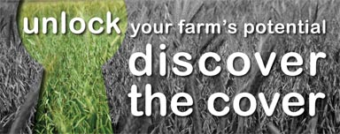 Soil Helath Fact Sheet: Discover the Cover