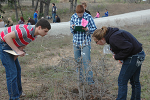 All 252 students were challenged at the plant identification phase of the regional contest.
