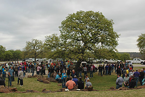The 12th Annual WRM CDE Contest was held at Cook Canyon Ranch in Eastland County, Texas.