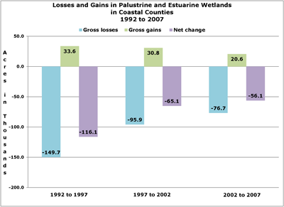 Bar chart of losses and gains in Palustrine and Estuarine wetlands, coastal counties
