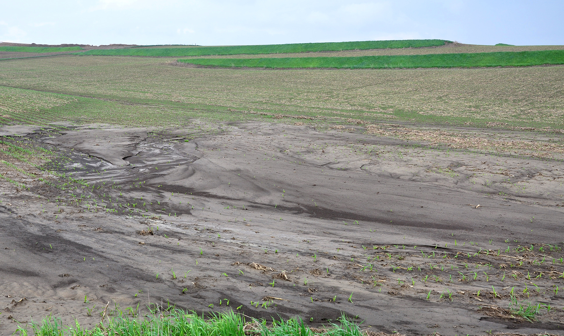 A silt fan formed in a field corner, covering newly planted corn on this western Iowa farm.