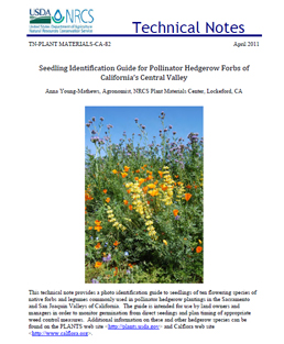 Seedling Identification Guide for Pollinator Hedgerow Forbs of California's Central Valley