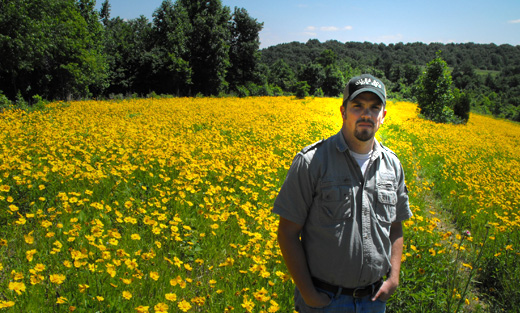 Chip Rose in Carvell Pollinator Field