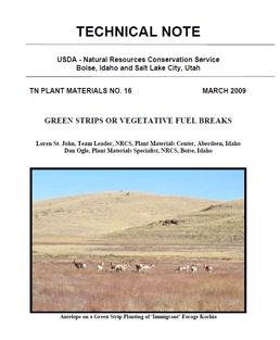 Cover of Green Strips or Vegetative Fuel Breaks