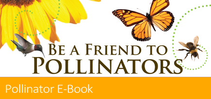 Download the pollinator ebook