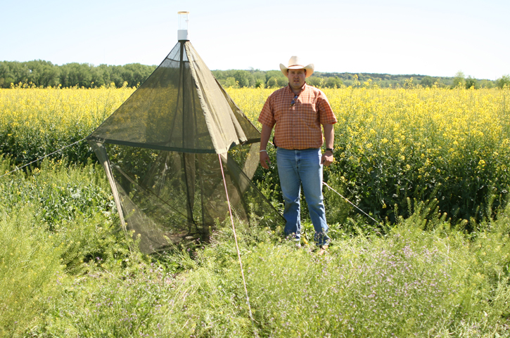 Allen Casey checks malaise trap for collecting flying insects