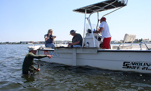 Subaqueous Soil Survey in Barnegat Bay