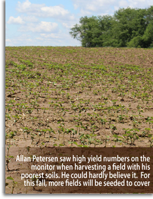 Allan Peterson saw high yield numbers on the monitor when harvesting a field with his poorest soils. He could hardly believe it.  For this fall, more fields will be seeded to cover crops.