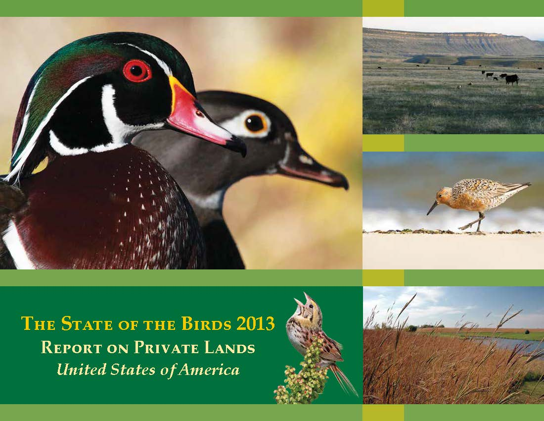 Pages from 2013 State of the Birds image