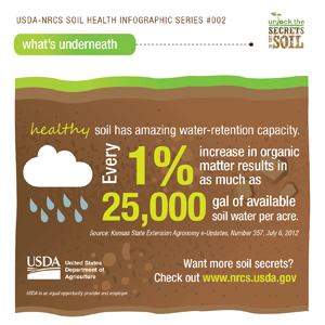 Soil Health Infographic Water