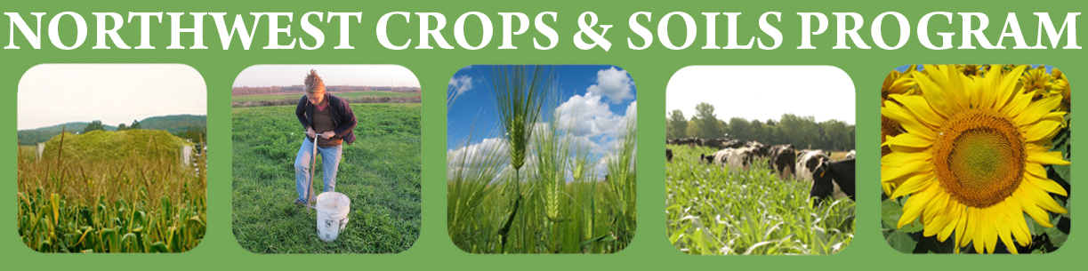 UVM Northwest Crops and Soils Program