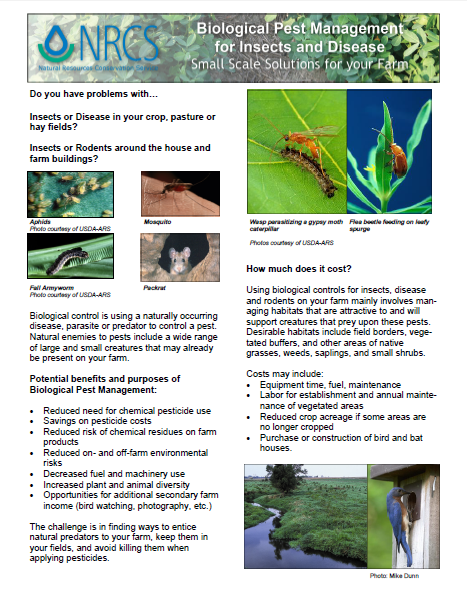 Biological Pest Management for Insects and Disease