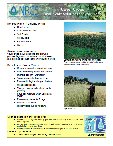 Crops-Cover Crops