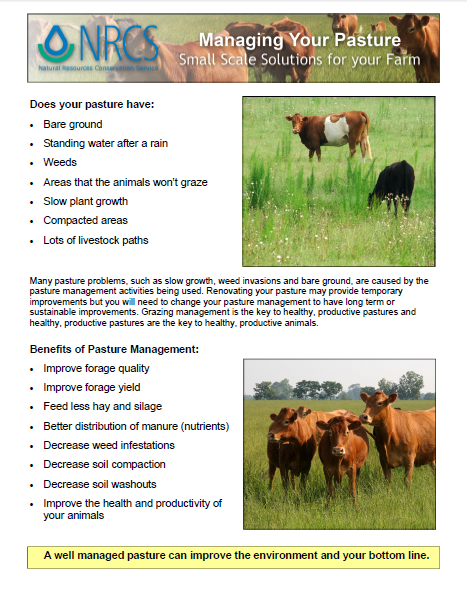 Managing Your Pastue