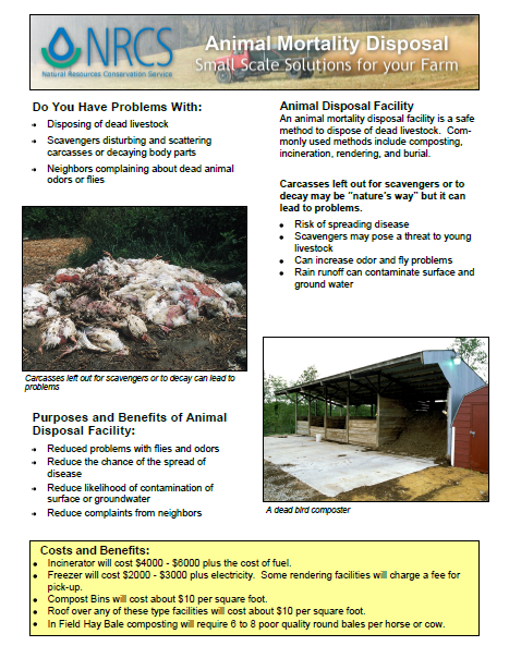 Livestock -Animal Mortality Disposal