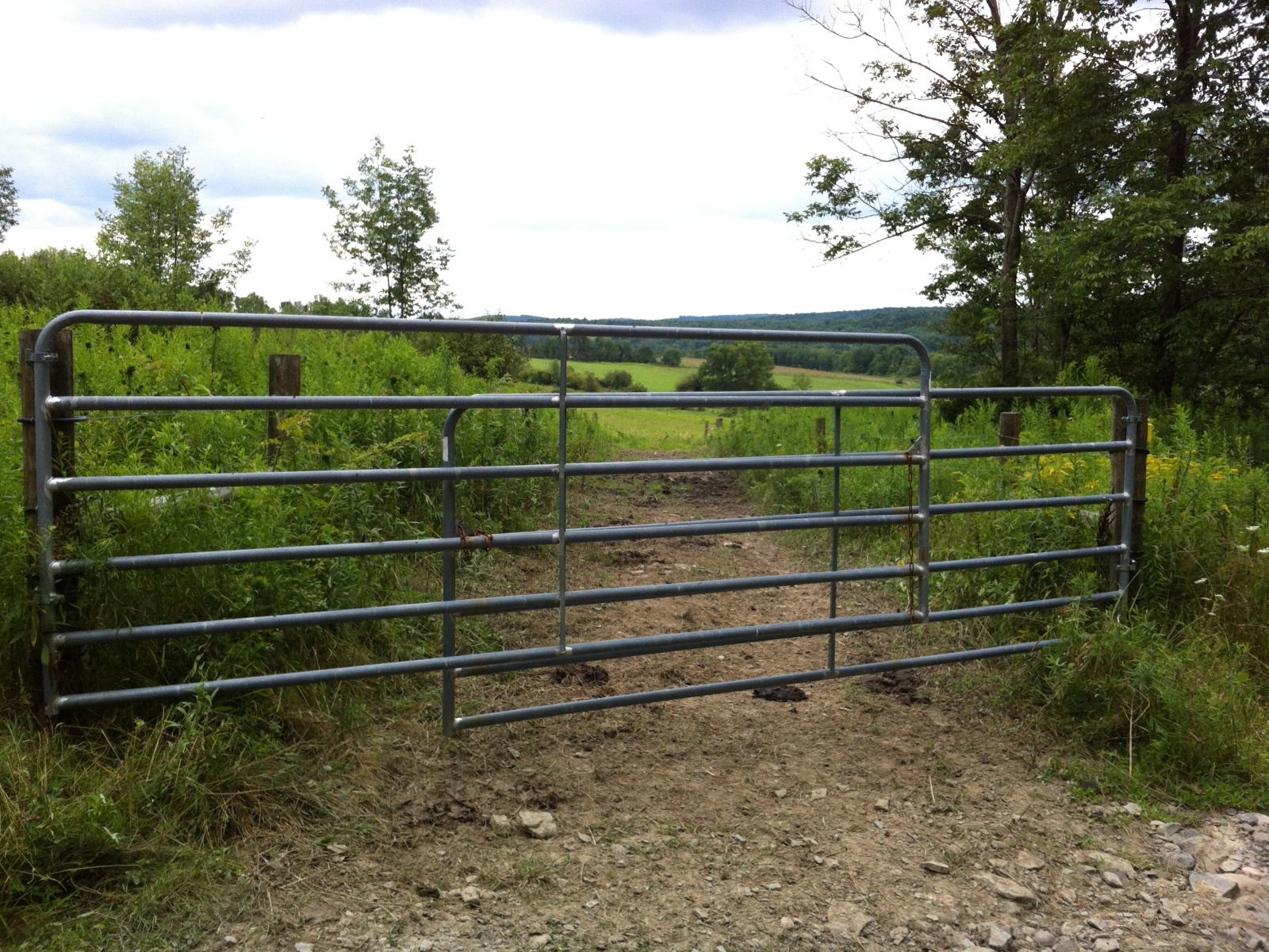 As part of their grazing system, the landowners installed fencing, gates, and laneways to control livestock