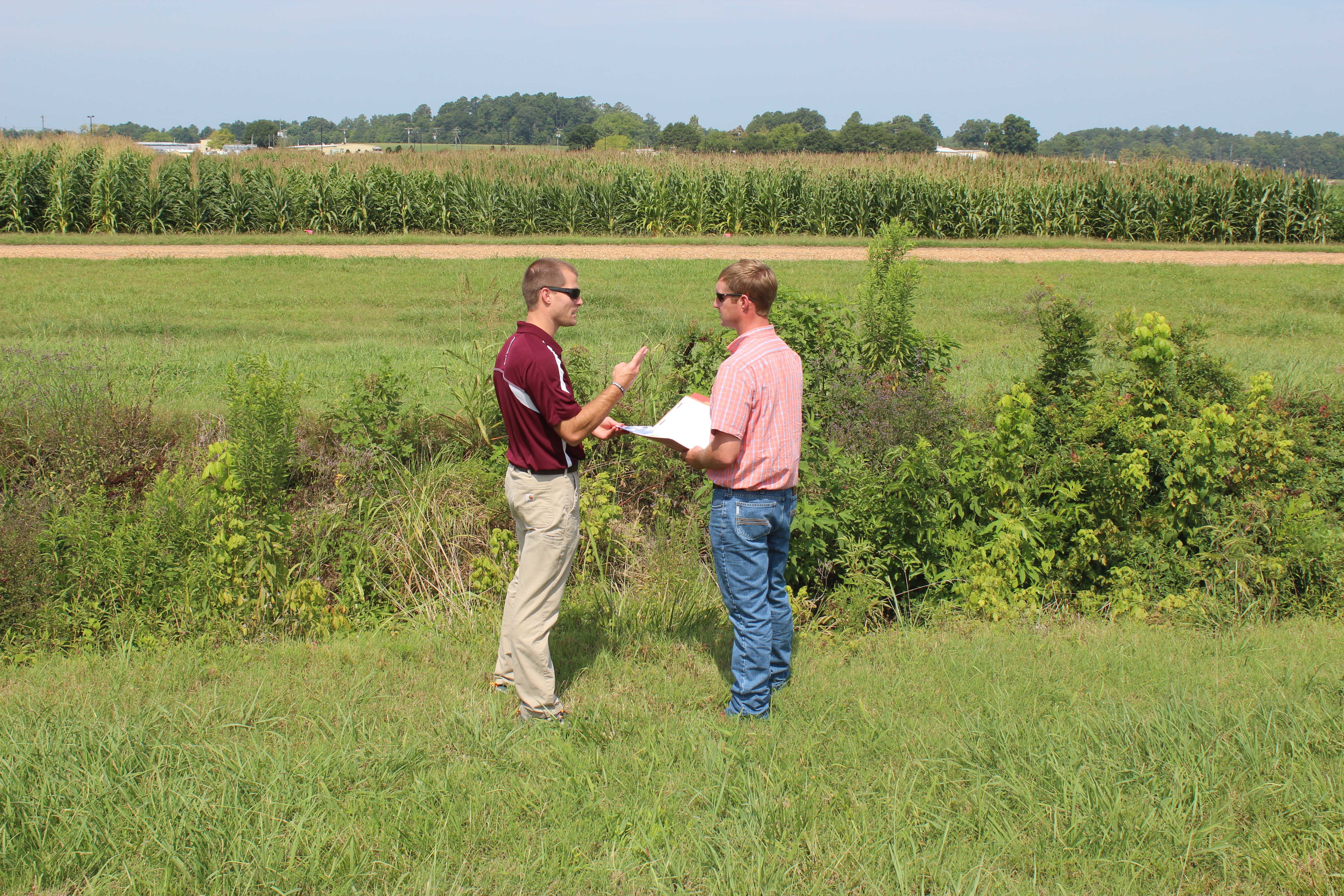 Discussing how best to monitor the role of cover crops for water quality improvement
