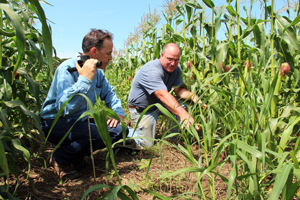 An NRCS conservationist consults with a grower in his field.