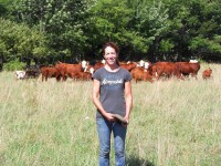 Pam Schreiber with some of 24 cow/calfs beef cattle utilizing new rotational grazing system on 42 acres of pasture