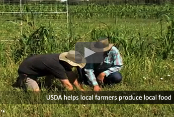 USDA helps local farmers produce local food