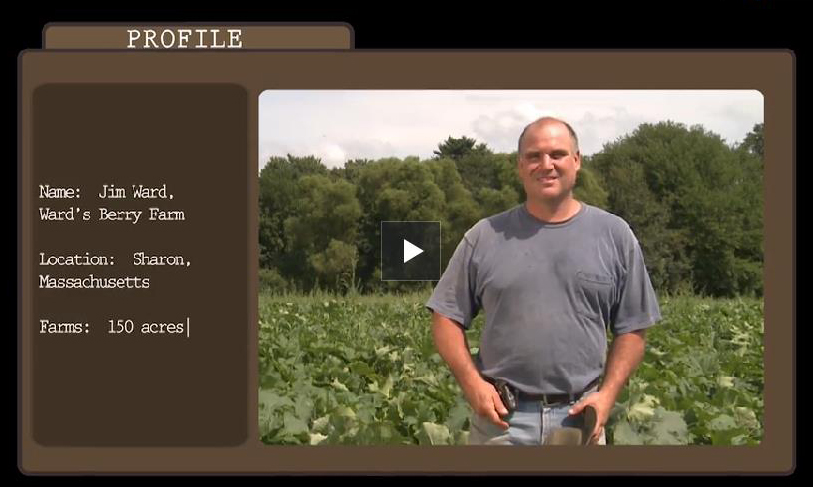 Jim Ward image