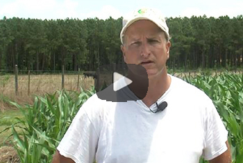 Brock image with Video button