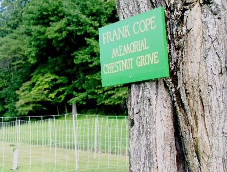Copes sign near the American Chestnut Seed Lot