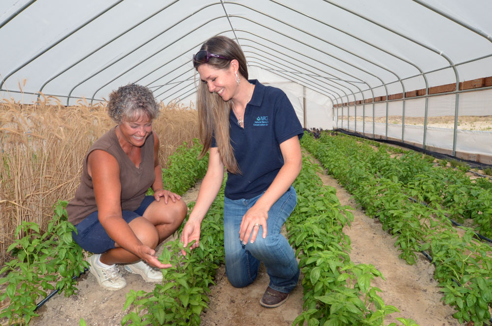Jaime Jasmine, NRCS district conservationist in Elko, Nev. (right), has worked closely with Carol H.