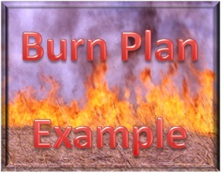 Burn Plan Example