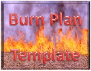 Burn Plan Template