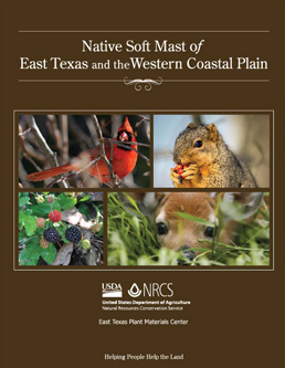 Cover of Native Soft Mast of East Texas and the Western Coastal Plain