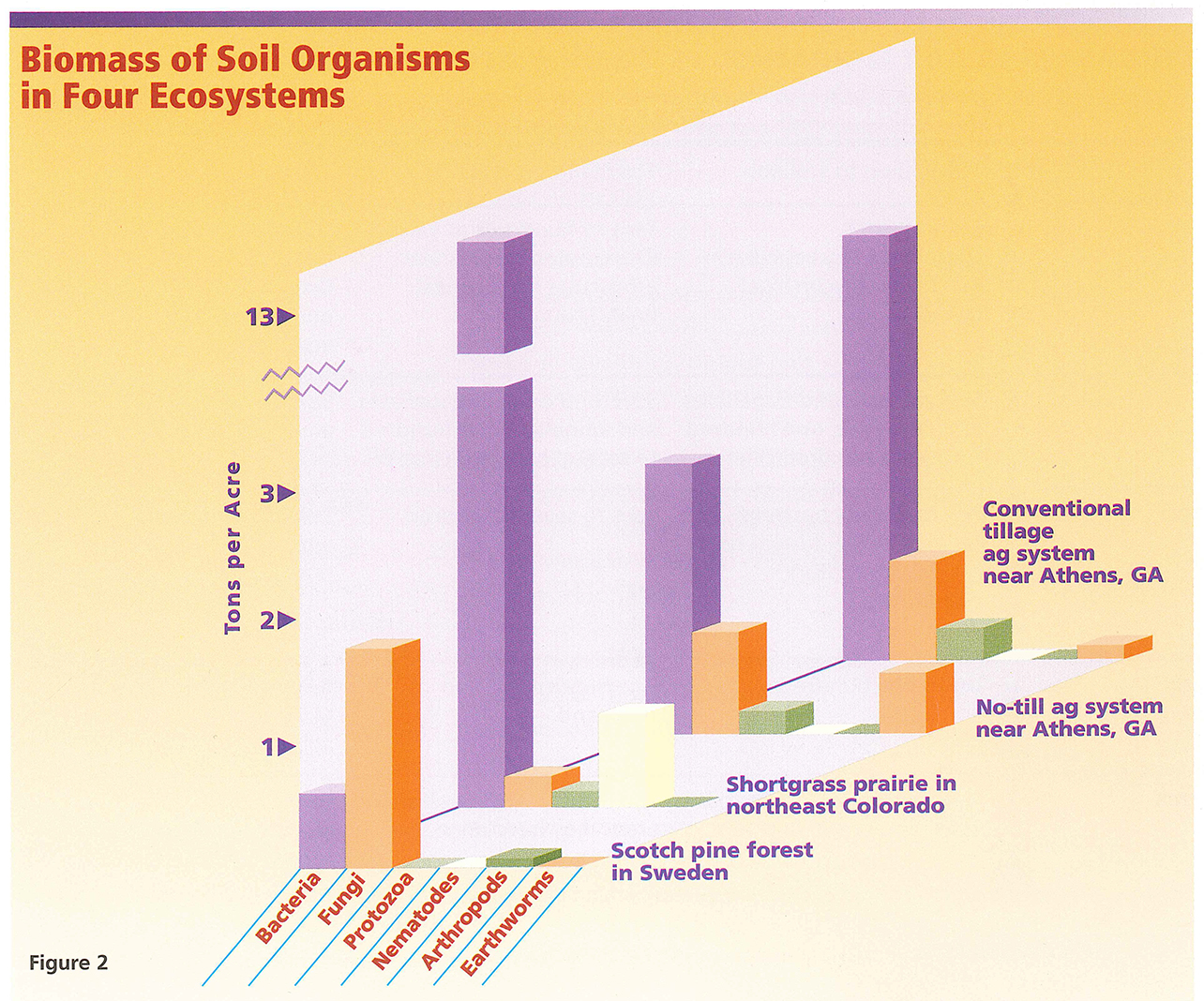 Biomass of Soil Organisms in Four Ecosystems
