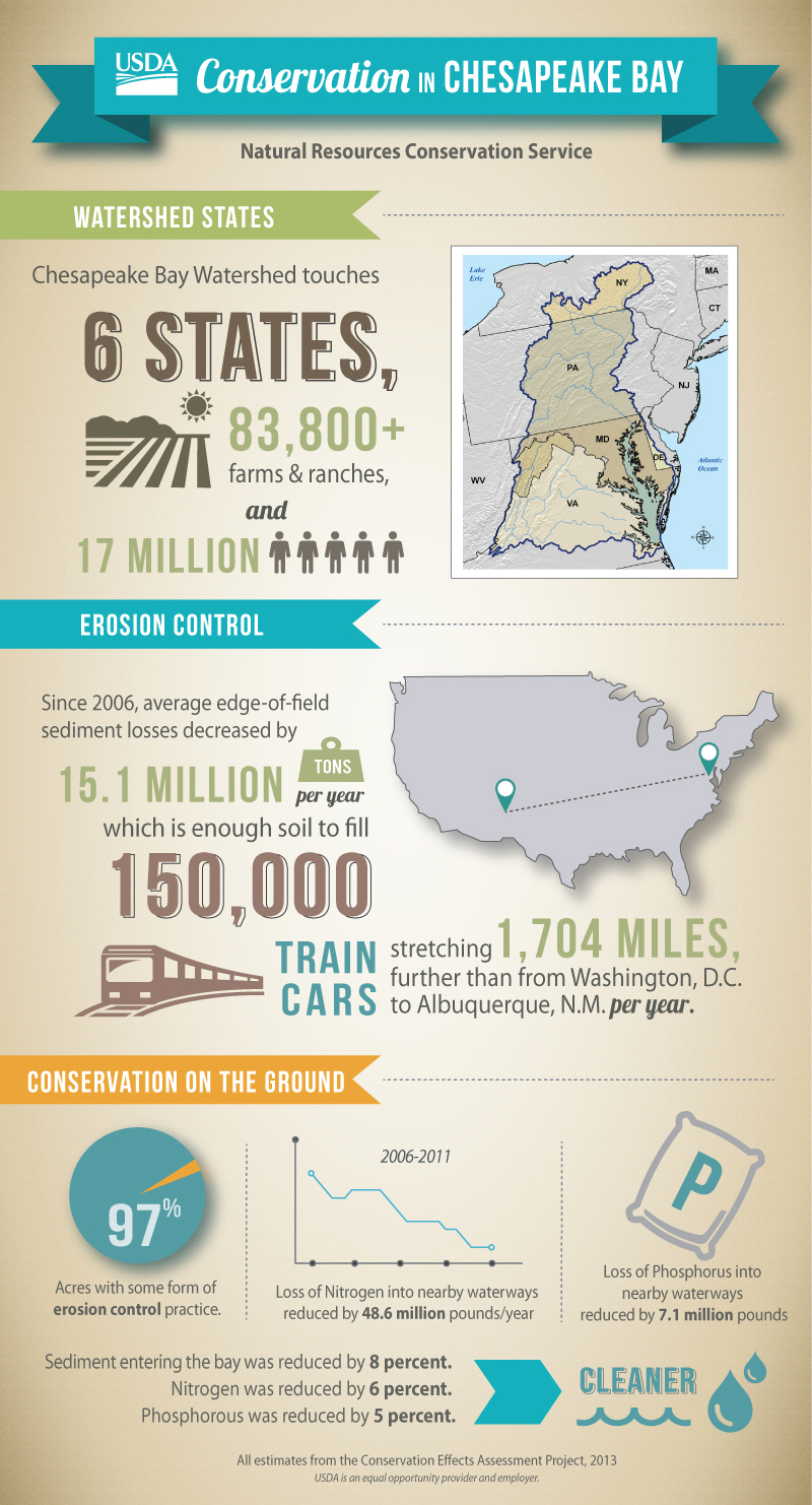 Chesapeake Bay Infographic