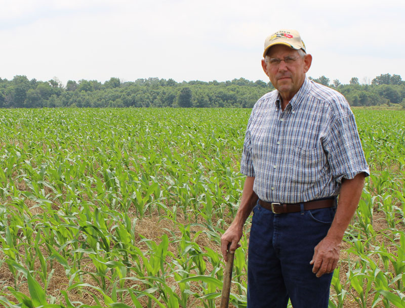 Ralph Upton standing in his field of corn