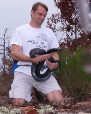 Matt Moore, a volunteer for The Orianne Society, holding a large male Eastern Indigo Snake.