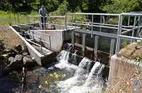 Jim Olson checks fish ladder at irrigation diversion point on Ramsey Creek
